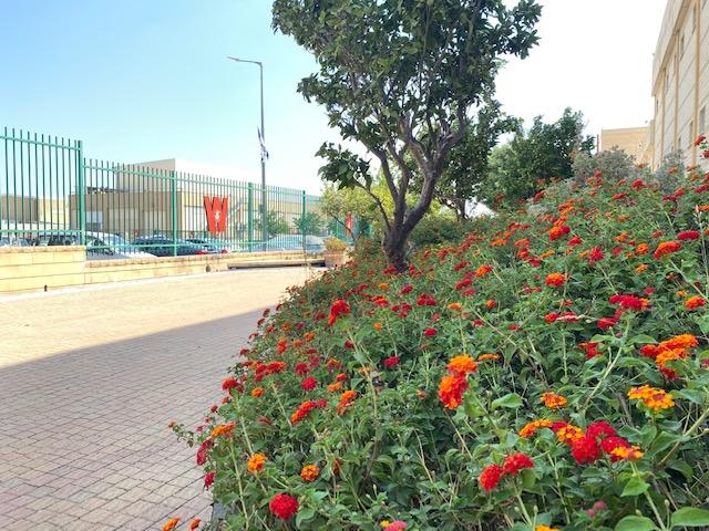 ヴィソツキー製造拠点の周りにはたくさんの花や植物が