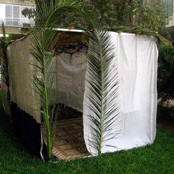 最も愛されるユダヤ祝日の一つ「スコット」に建てられる<br>仮小屋「スッカ」とは?