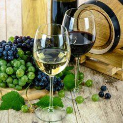 ソムリエが選んだイスラエルワインおすすめランキングTOP5