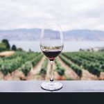 ワイン好き必見!イスラエルのオーガニックワインおすすめ5選