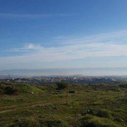 EART LIFE in Jerusalem 第七回 |イスラエルへの恩返し