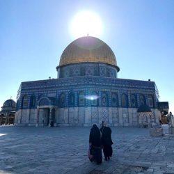 イスラエル・エルサレム旧市街 「神殿の丘」散策と「アルメニア陶器屋」巡り