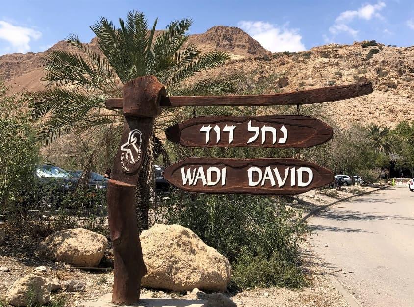 WADI DAVID(ダビデの谷)コース入口