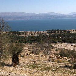 死海を一望!エン・ゲディ自然保護区で水陸両方トレッキング