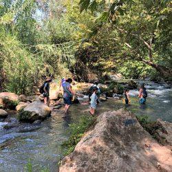 涼を求めて!イスラエル北部水辺の観光スポット